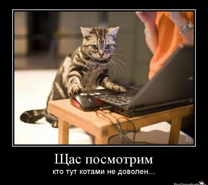 1332998077_1332449916shhasposmotrim
