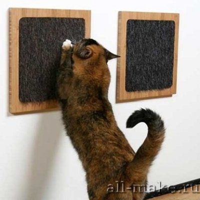 1296313710_itch-cat-scratch-pad