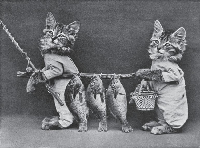 Коллекция работ фотографа Гарри Уиттера Фриса, сделанных в июне 1914 года