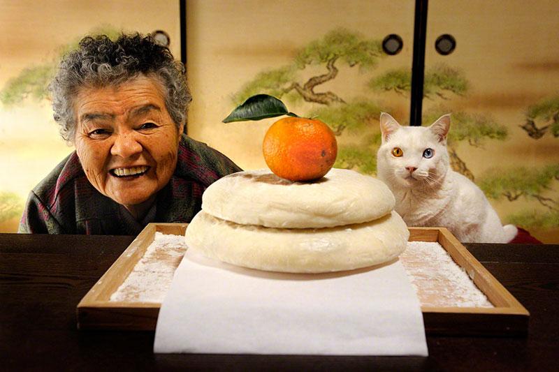 Повседневная жизнь бабушки и кошки