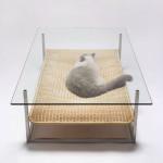 25 оригинальных предметов мебели для котов и их хозяев