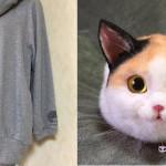 Сумки в виде кошек: новая мода в Японии