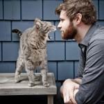 Как подружиться с котом любимого человека?
