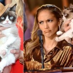 Grumpy Cat: Самый Богатый Кот в Мире