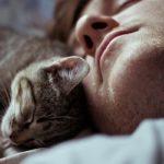 Какие они: мужчины, которые любят кошек?